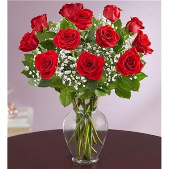 Rose Elegance Dozen Red Long Stem Roses